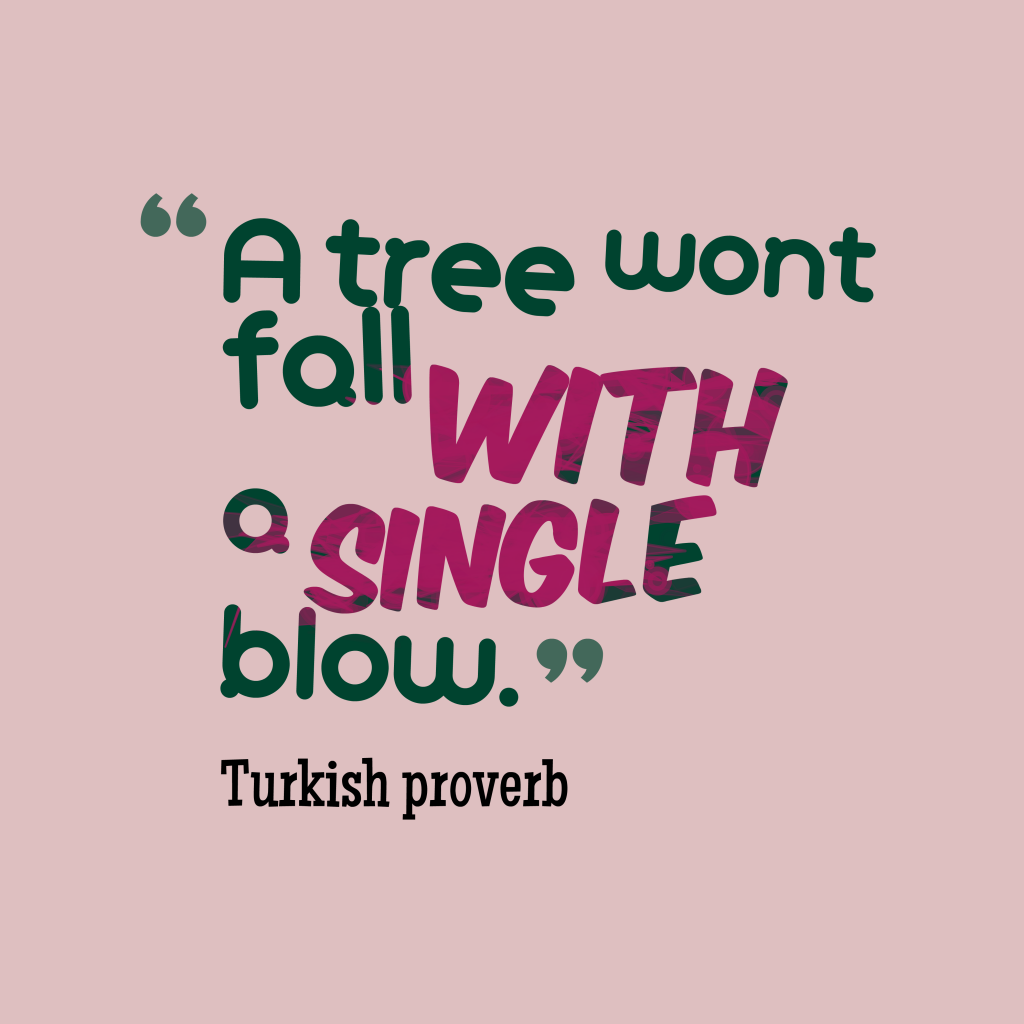 Turkish proverb about task.