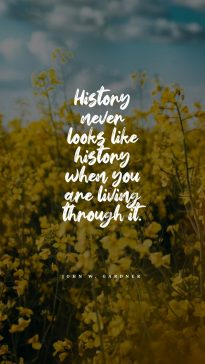 Bill Moyers 's quote about history. History never looks like history…
