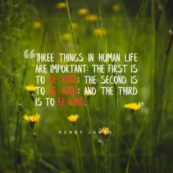 Henry James 's quote about kindness,life. Three things in human life…