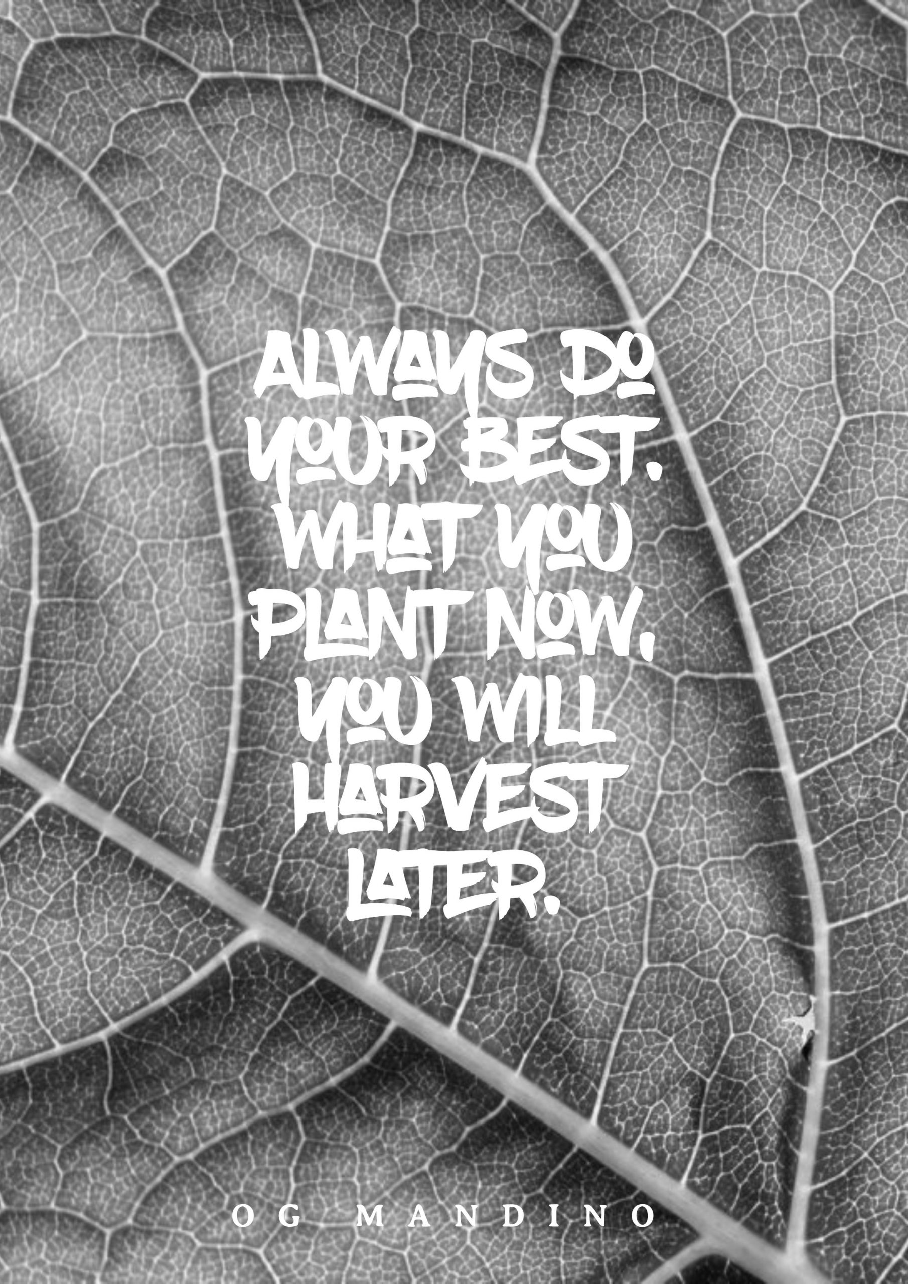 Quotes image of Always do your best. What you plant now, you will harvest later.