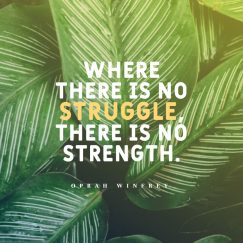 Oprah Winfrey 's quote about strength,struggle. Where there is no struggle,…