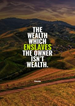 The wealth which enslaves the owner isn't wealth.