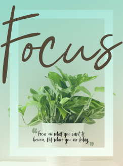@YourDailyDose1 's quote about focus. Focus on what you want…