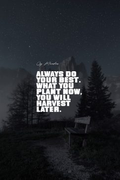 Og Mandino 's quote about doing,hardwork. Always do your best. What…
