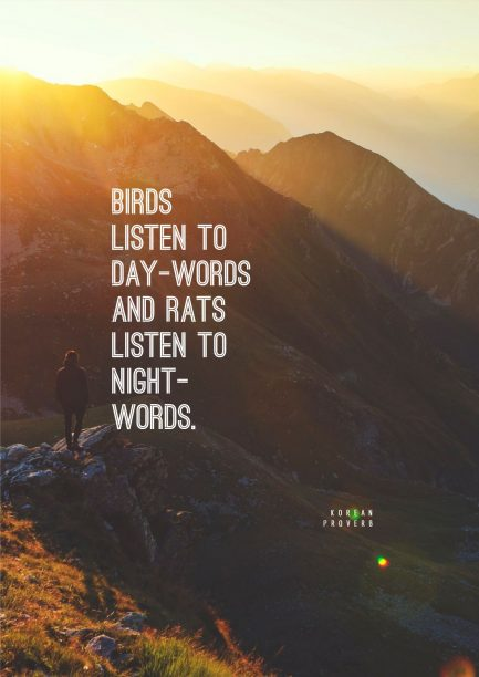 Korean Wisdom 's quote about listen. Birds listen to day-words and…