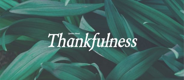 Best Quotes About Thankfulness