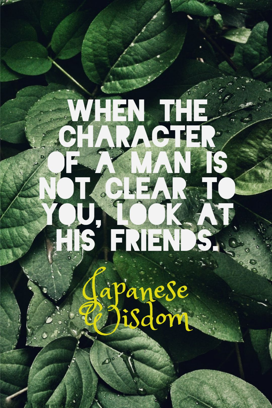 Quotes image of When the character of a man is not clear to you, look at his friends.