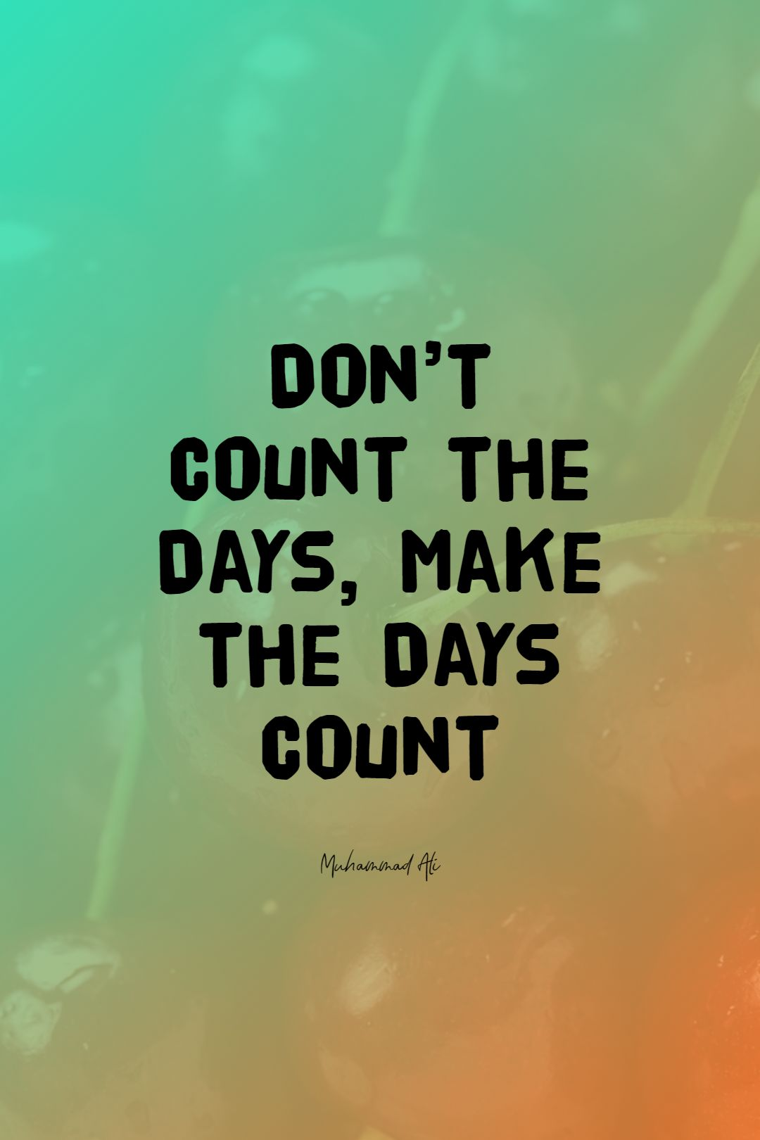 Quotes image of Don't Count the Days, Make the Days Count