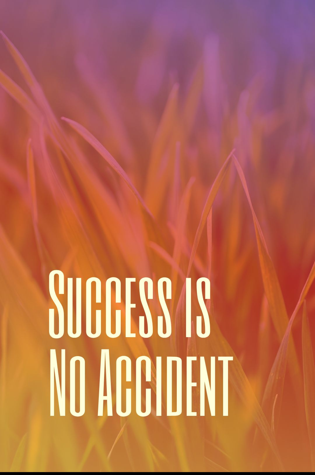 Quotes image of Success is No Accident