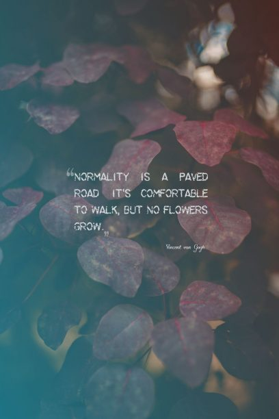 Vincent van Gogh 's quote about comfort,normal. Normality is a paved road:…