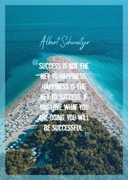 Albert Schweitzer 's quote about happiness,success. Success is not the key…