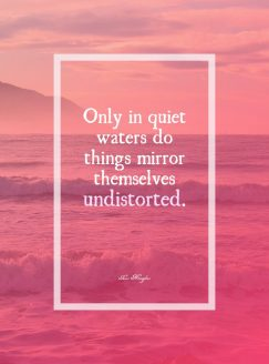 Only in quiet waters do things mirror themselves undistorted.