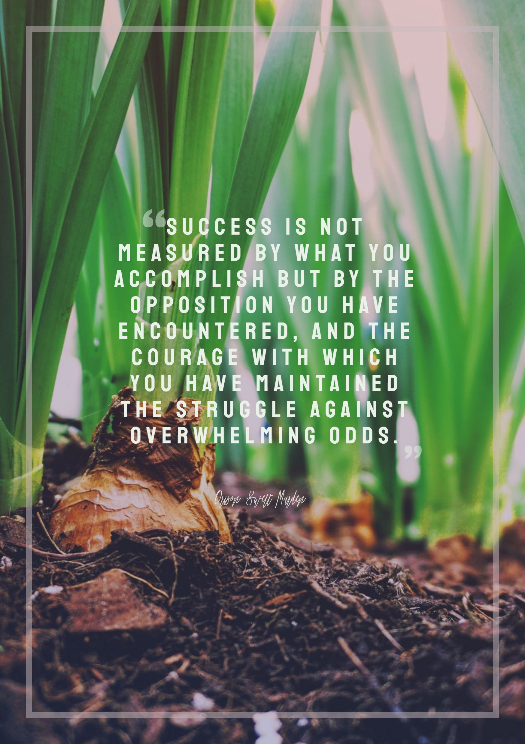 Quotes image of Success is not measured by what you accomplish but by the opposition you have encountered, and the courage with which you have maintained the struggle against overwhelming odds.
