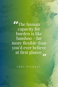 Jodi Picoult 's quote about burden. The human capacity for burden…