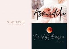 New Artistic Signature Fonts from Ana Natalia