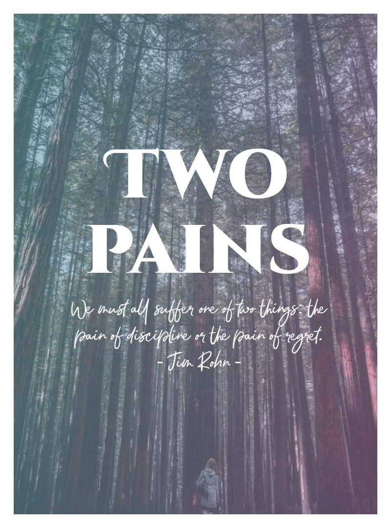 Quotes image of We must all suffer one of two things: the pain of discipline or the pain of regret.