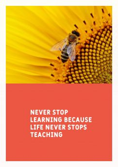 noname 's quote about learn,teach. Never stop learning because life…