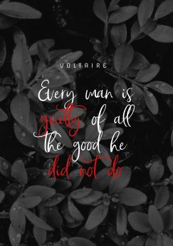 Every man is guilty of all the good he did not do. by Voltaire