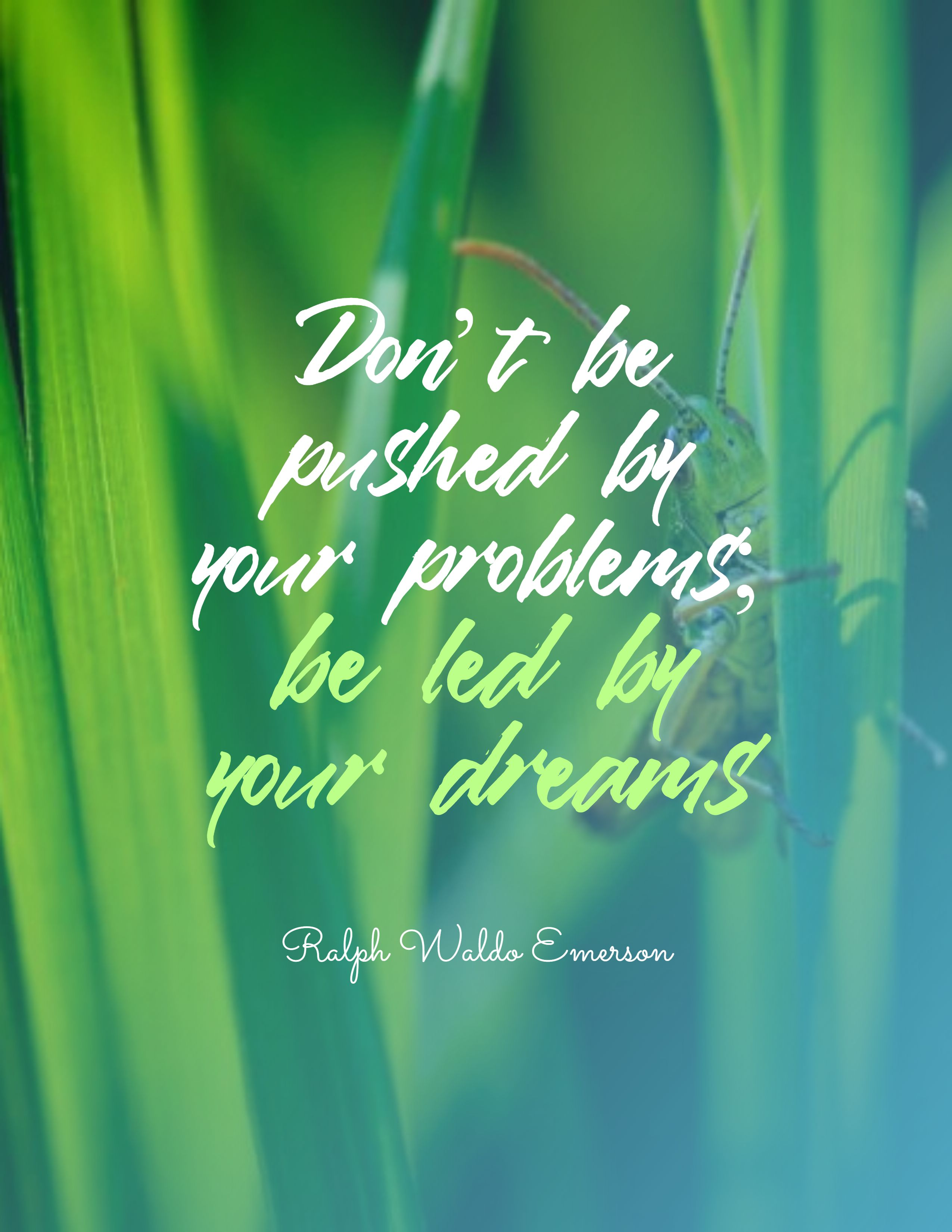 Quotes image of Don't be pushed by your problems; be led by your dreams