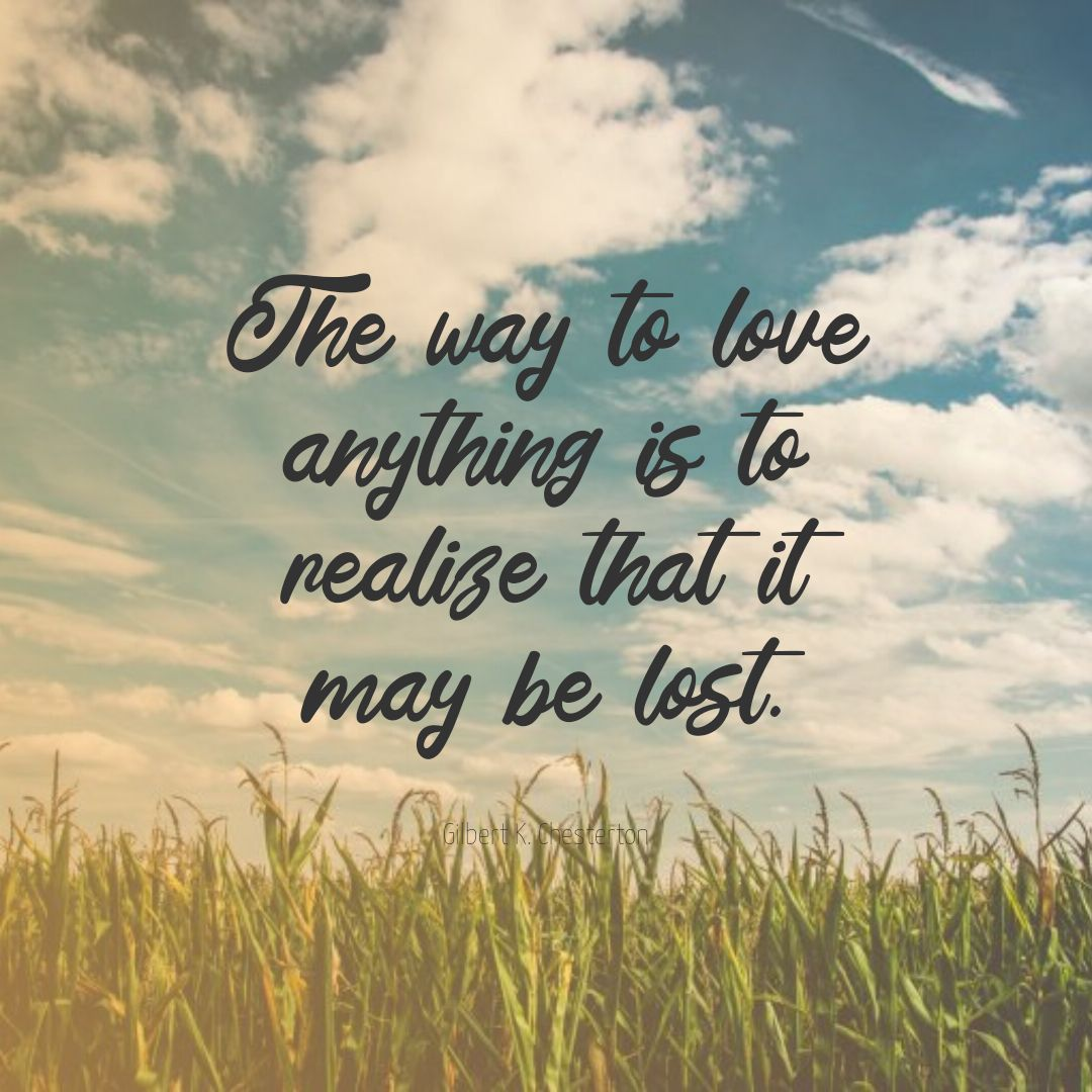 Quotes image of The way to love anything is to realize that it may be lost.