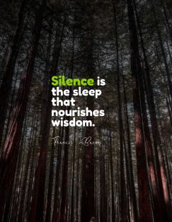 Francis Bacon's quotes about silence