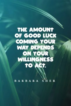 Barbara Sher's quotes about good luck: The amount of good luck coming your way depends on your willingness to act.