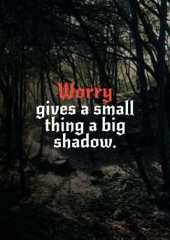 wise man's quote about worry, fear. Worry gives a small thing…