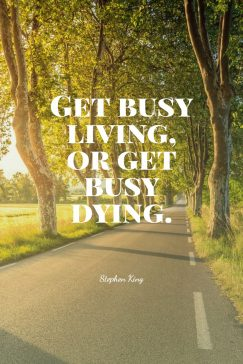 Stephen King's quote about life. Get busy living, or get…
