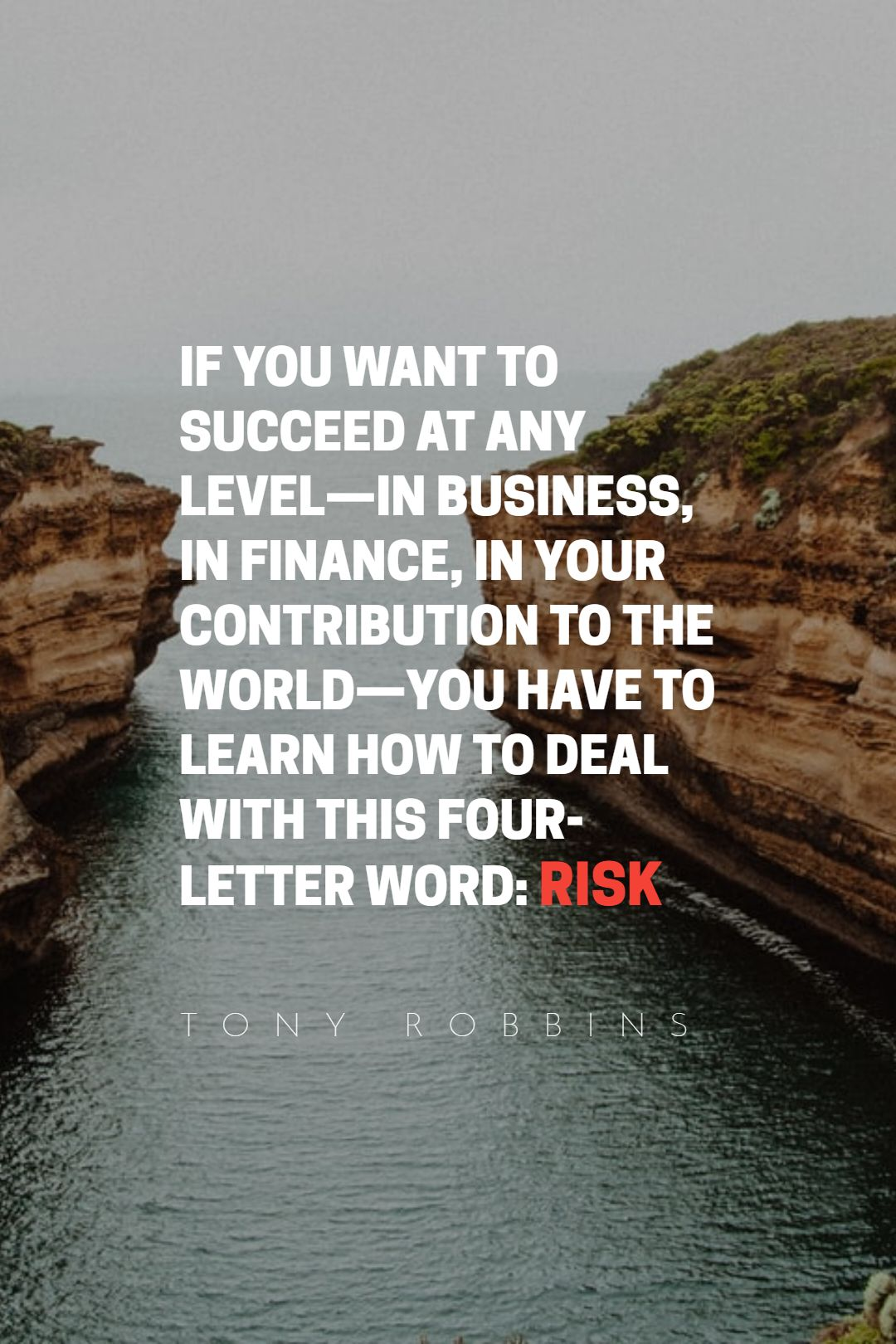 Quotes image of If you want to succeed at any level—in business, in finance, in your contribution to the world—you have to learn how to deal with this four-letter word: risk