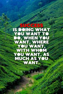 Tony Robbins's quote about success. Success is doing what you…