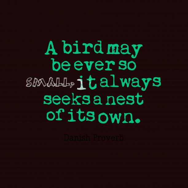 Danish Wisdom 's quote about . A bird may be ever…