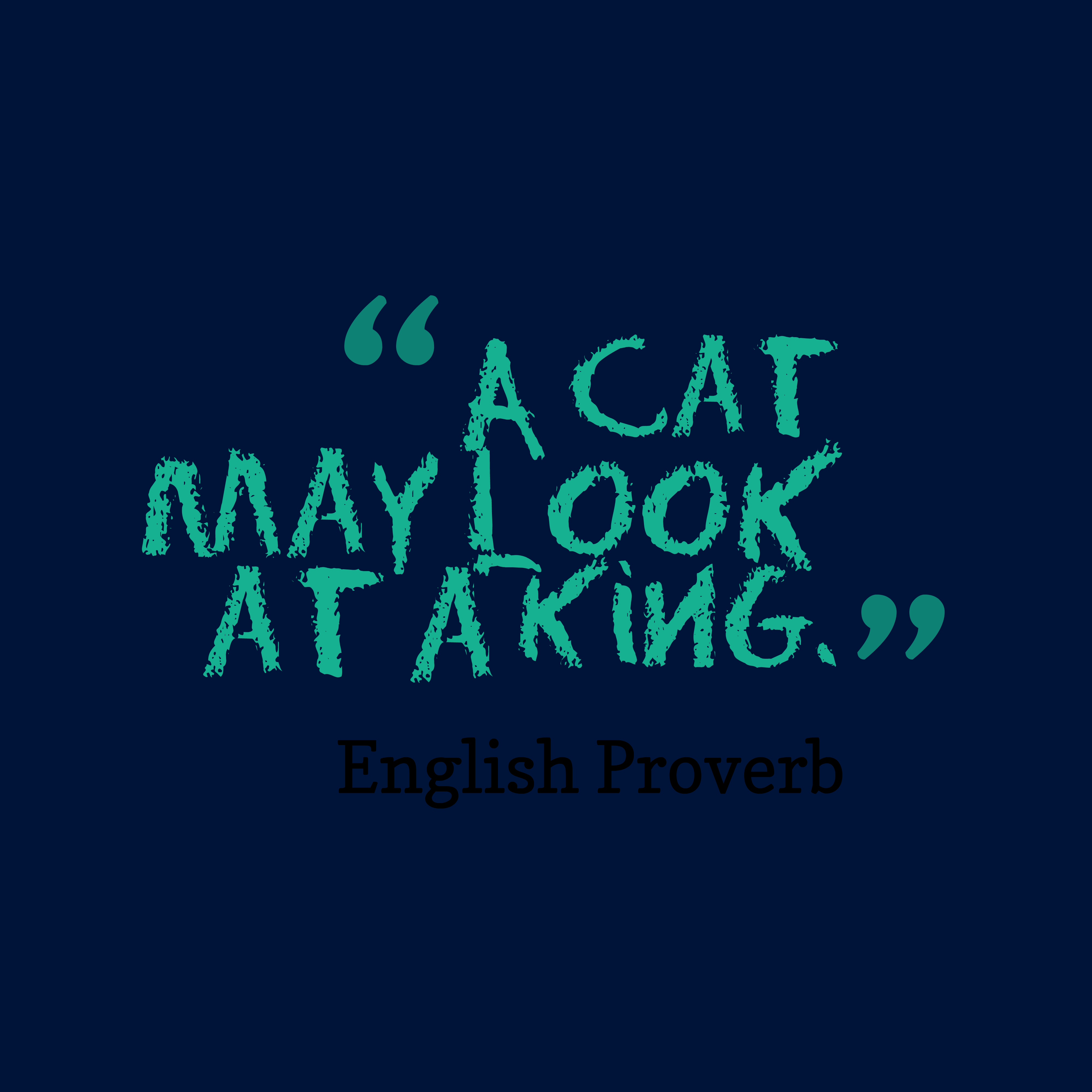 Quotes image of A cat may look at a king.