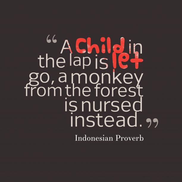 Indonesian Wisdom 's quote about . A child in the lap…
