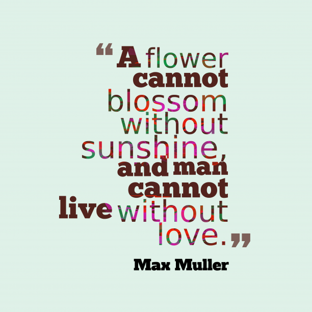 Max Muller 's quote about . A flower cannot blossom without…