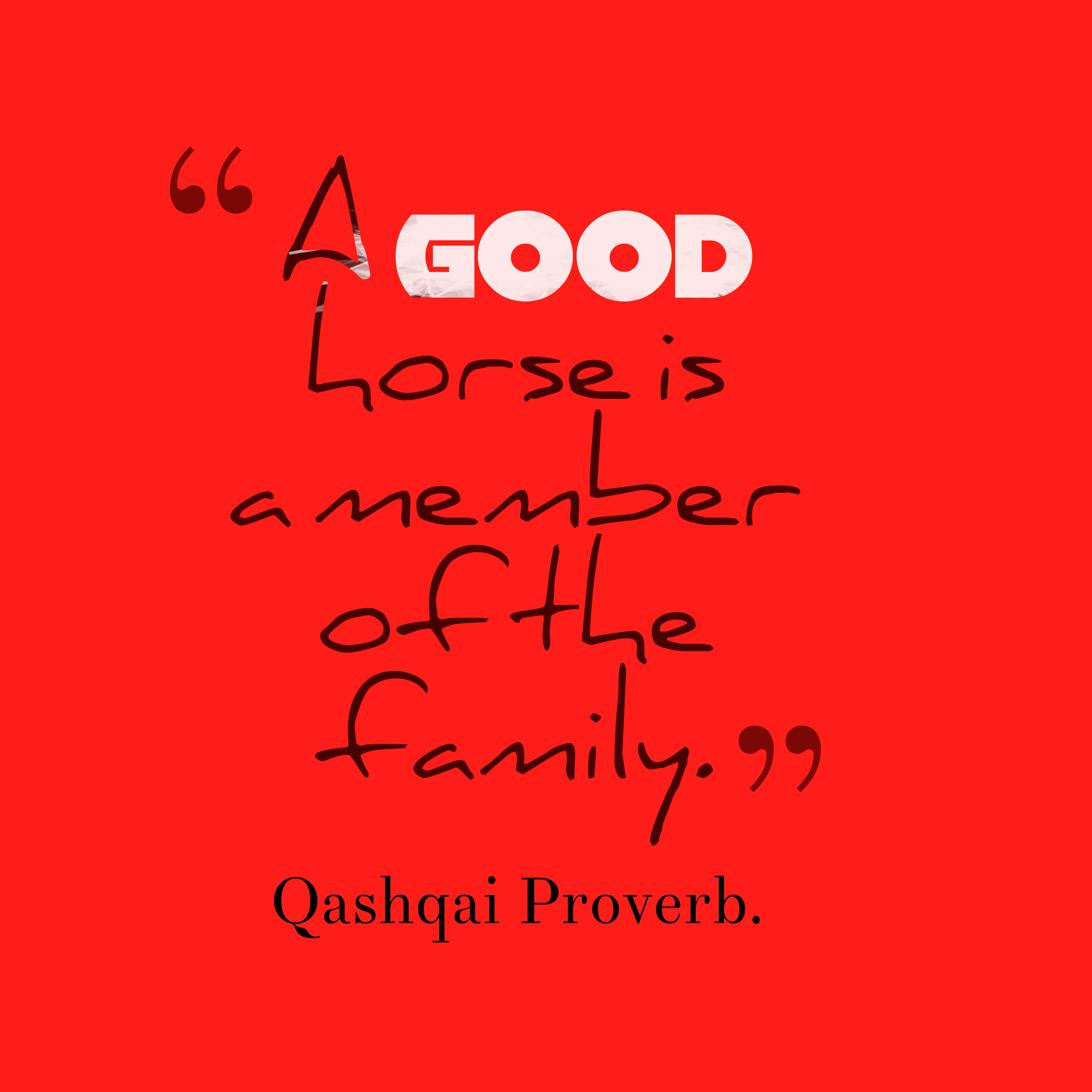 Picture Qashqai proverb about member. | QuotesCover.com