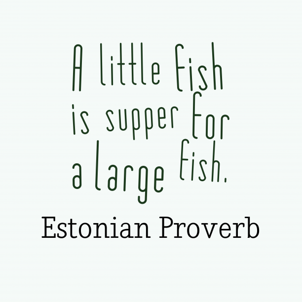 Estonian Wisdom 's quote about . A little fish is supper…