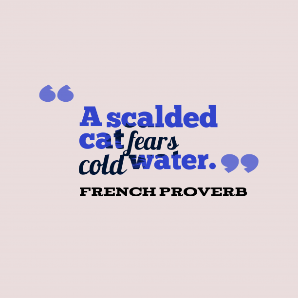 French Wisdom 's quote about . A scalded cat fears cold…