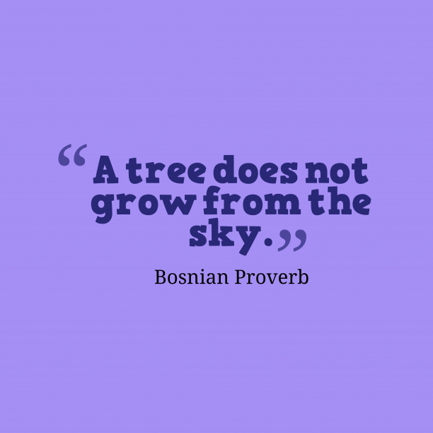 Bosnian Wisdom 's quote about . A tree does not grow…