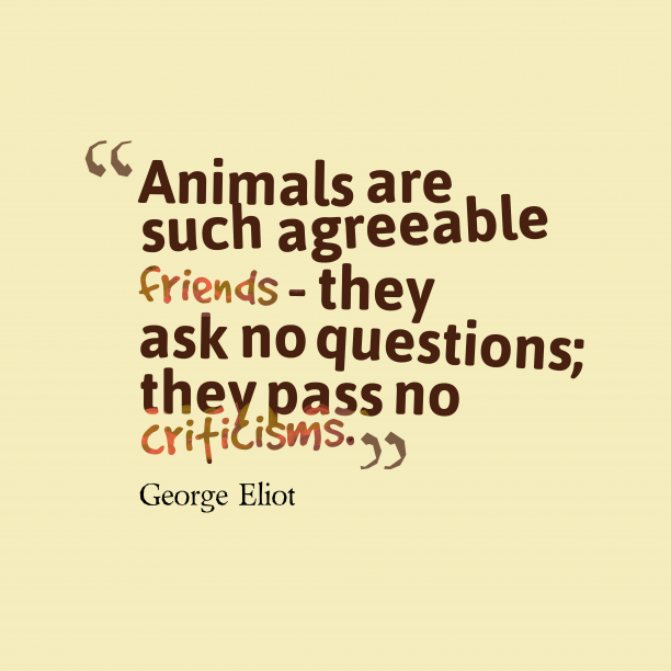 George Eliot 's quote about Animals. Animals are such agreeable friends…