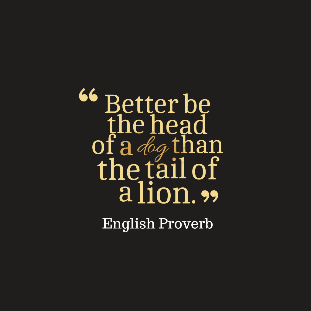 English proverb about leadership.