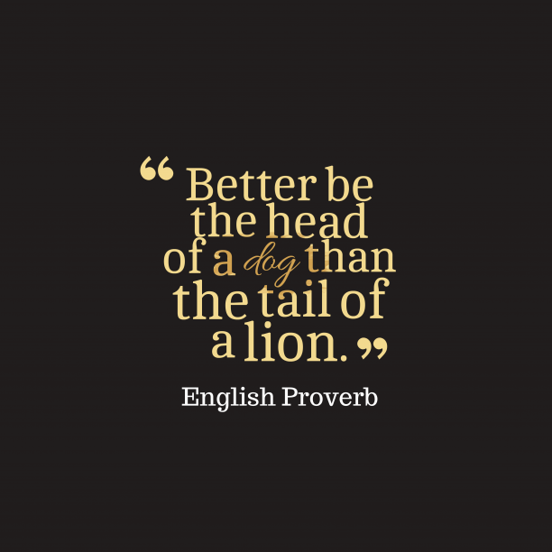 English Wisdom 's quote about . Better be the head of…
