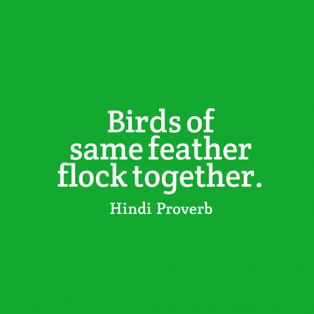 Hindi Wisdom 's quote about Birds. Birds of same feather flock…