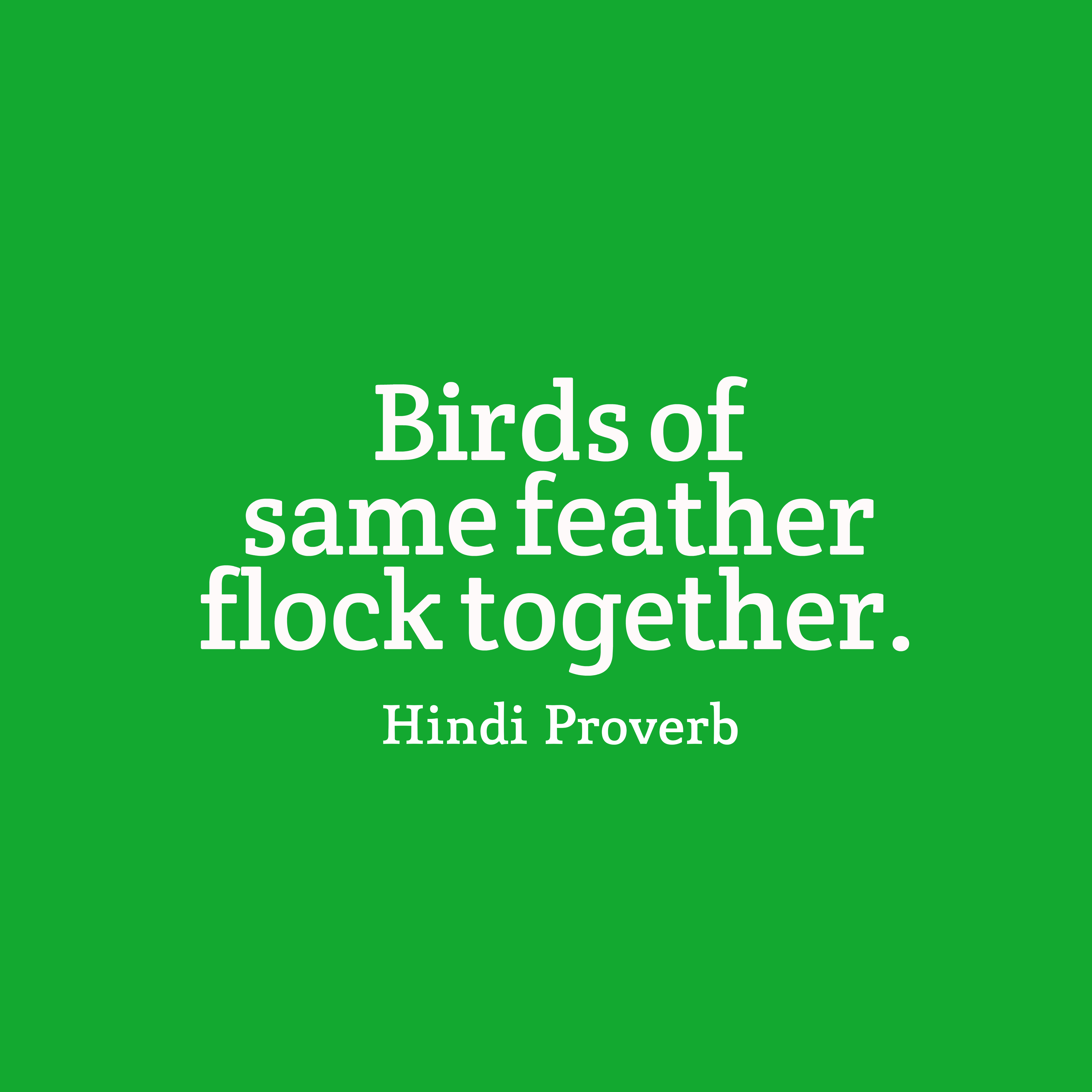 Quotes image of Birds of same feather flock together.