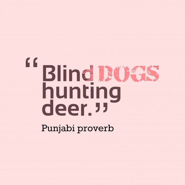Punjabi proverb about job.