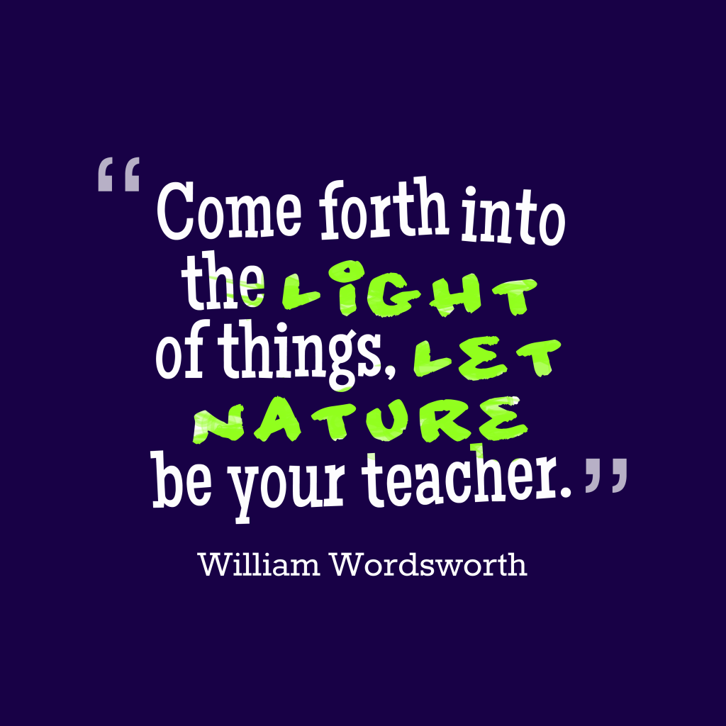 William Wordsworth quote about teacher.