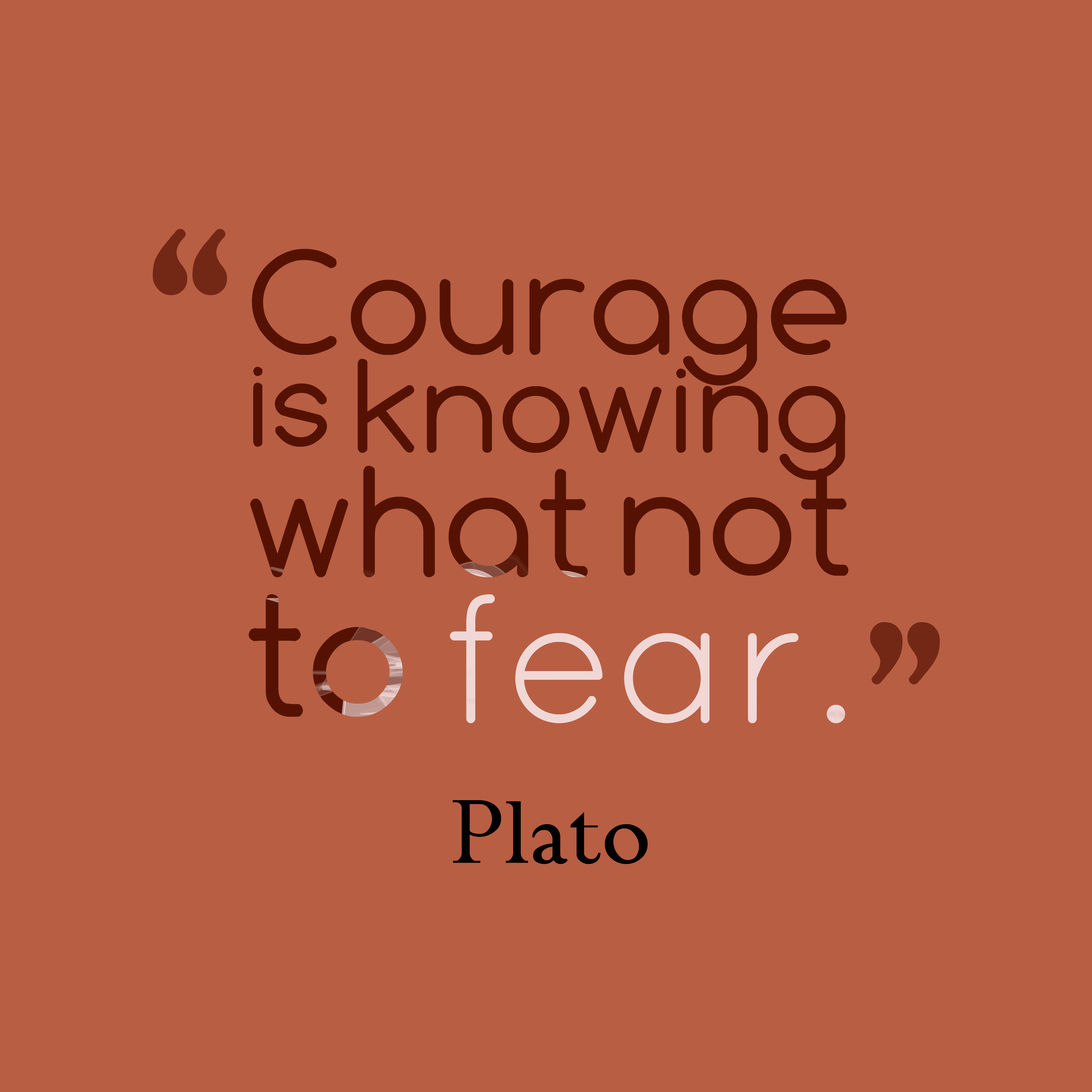 Quotes image of Courage is knowing what not to fear.