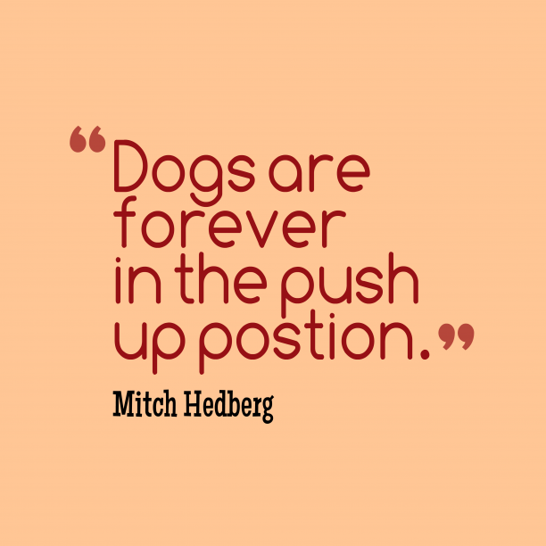 Mitch Hedberg quote about position.