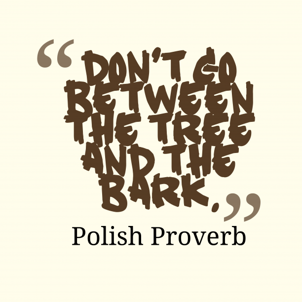 Polish Wisdom 's quote about Advice. Don't go between the tree…
