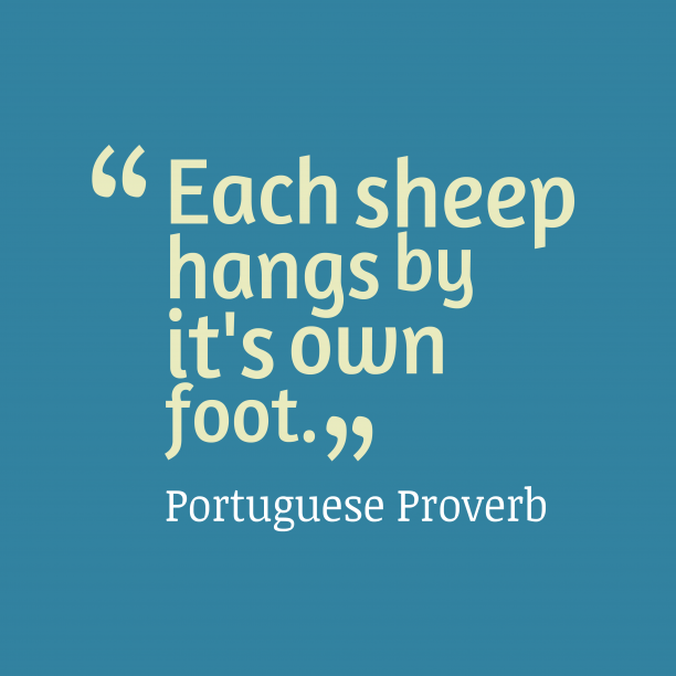 Portuguese Wisdom 's quote about . Each sheep hangs by it's…