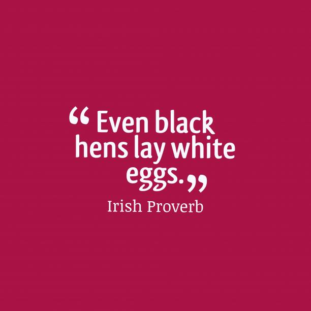 Irish wisdom about judge.